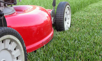 Lawn Care in Omaha NE Lawn Care Services in Omaha NE Quality Lawn Care in Omaha NE